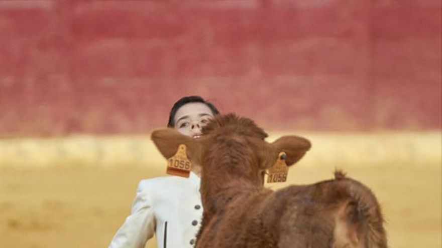 Alberto Donaire, torero de 11 años