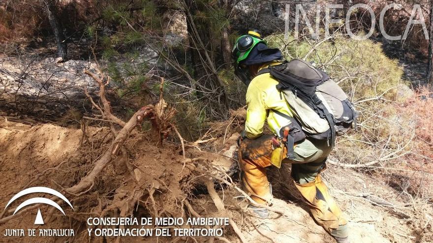 El incendio de Almonaster habría afectado a una superficie próxima a las 300 hectáreas
