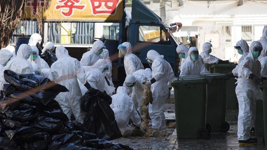 China registra sus dos primeras muertes por gripe aviar del invierno
