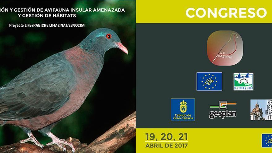 """El Proyecto LIFE+Rabiche organiza el primer Congreso """"Conservación y gestión de avifauna insular amenazada y gestión de hábitats"""""""