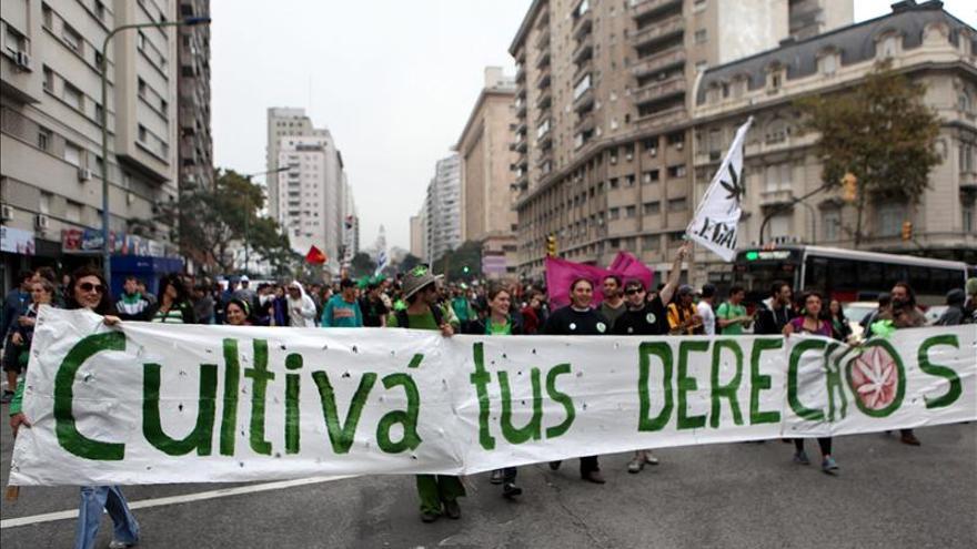 Activistas piden al Estado uruguayo que no retrase la legalización de la marihuana