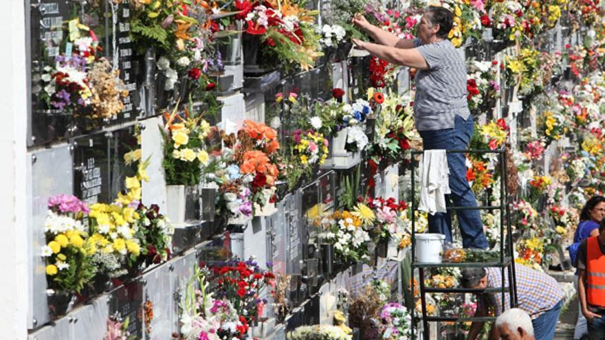 Del ambiente en nuestros cementerios #4