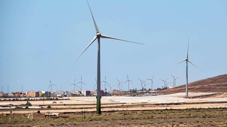 Las ONG advierten del impacto de los enclaves para las renovables en Canarias