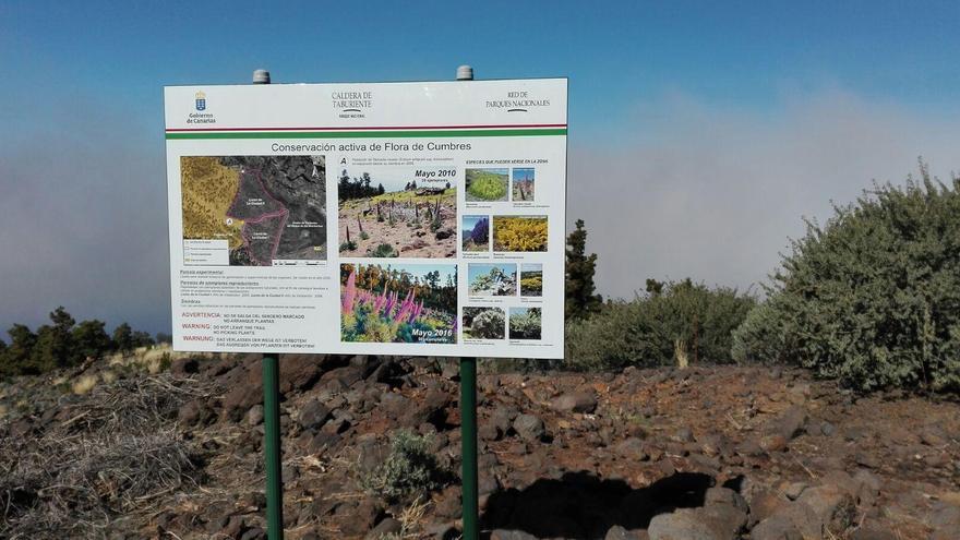 La señal interpretativa sobre la conservación activa de la flora de cumbre ha sido colocada por debajo de donde se está construyendo el Centro de Visitantes de El Roque de Los Muchachos.