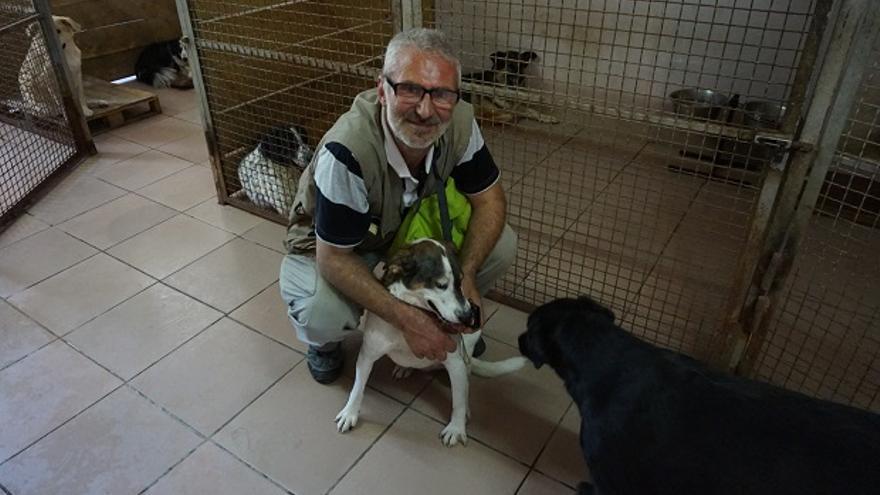 El aquitecto Teimuraz Tsikoridze lo dejó todo para ayudar a los animales de Georgia. Foto: Almudena Alameda