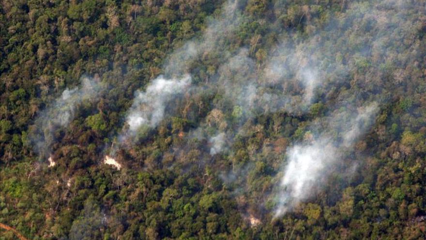 Extinguen incendio en selva peruana que dejó un muerto y quemó 200 hectáreas
