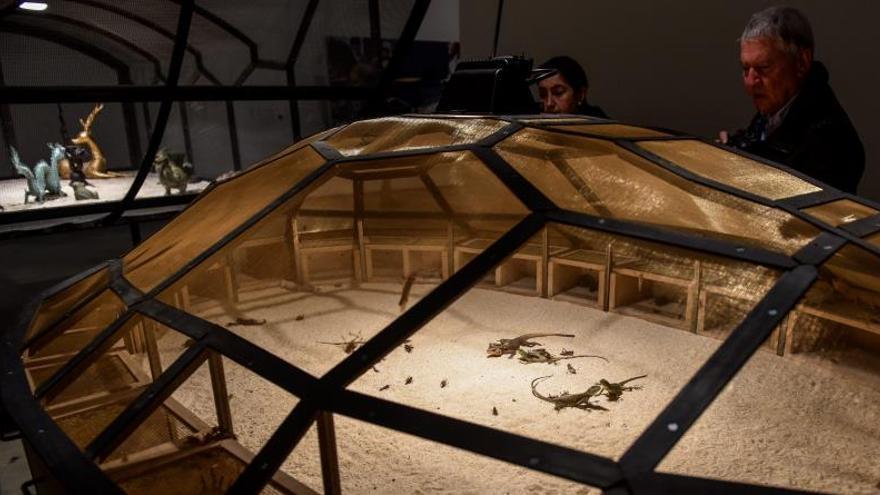 Los Animalistas piden al Ayuntamiento la retirada de dos obras del Guggenheim