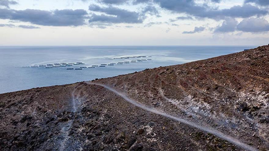 Granjas marinas de Playa Quemada, en Lanzarote (RAMÓN PÉREZ NIZ/DIARIO DE LANZAROTE)