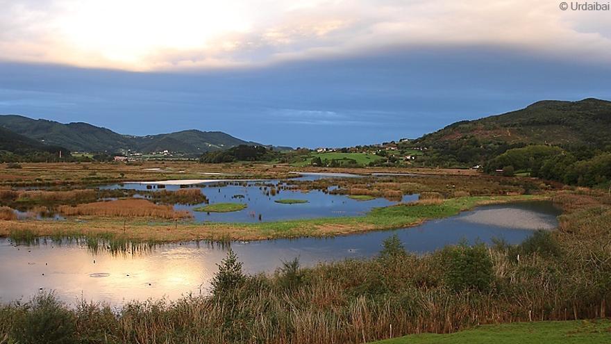 El Centro de Biodiversidad de Euskadi celebrará este fin de semana el 'Día Mundial de los Humedales'