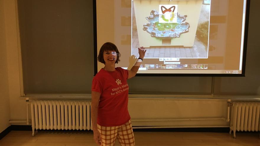 Nueva York se inspira en la iniciativa ciudadana de Sant Boi de Llobregat. Foto: Llobregats.com