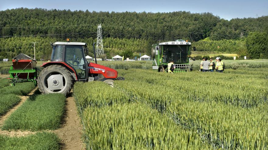 Agricultura en Navarra. Foto:navarra.es