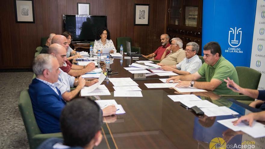En la imagen, reunión del Consejo Insular de Caza.