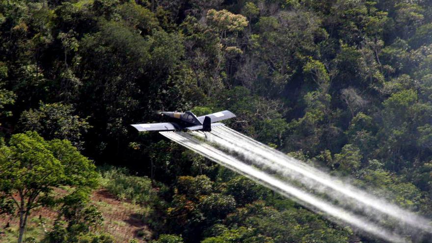Colombia prohibió la aspersión de glifosato utilizada para combatir los cultivos de coca