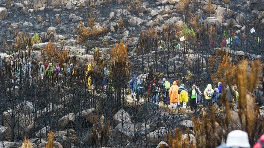 La Ley de montes mejorará su gestión y evitará fuegos interesados, según Magrama