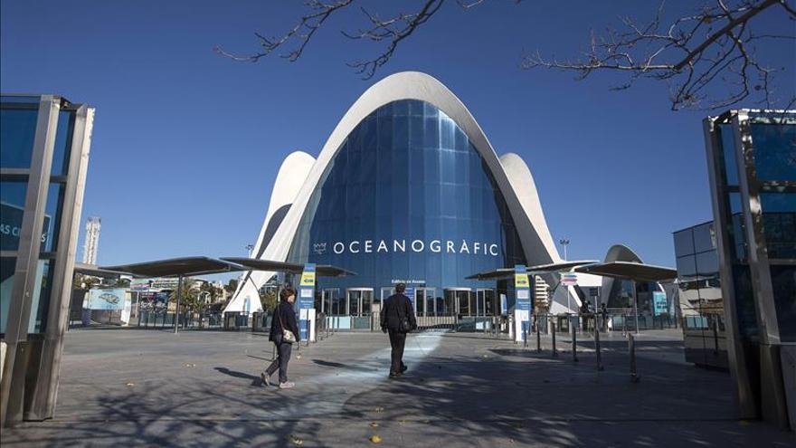Dos valencianos bucean para dar vida a la primera película submarina española