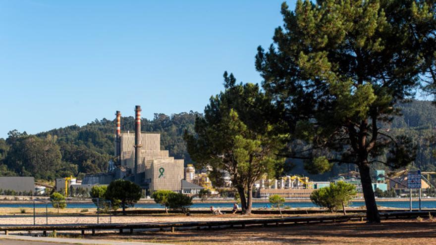 Ence cuenta con dos fábricas de celulosa: una en Pontevedra y otra en Navia (Asturias).