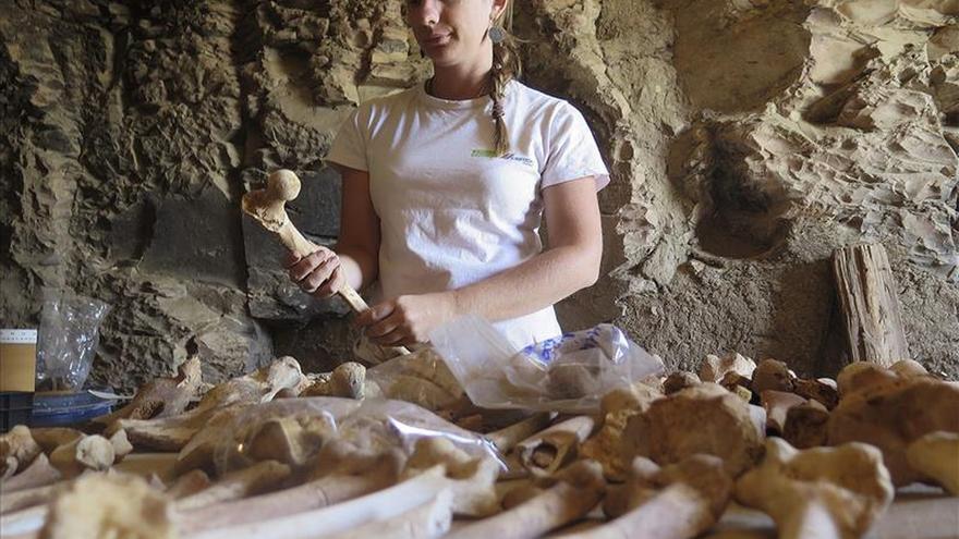 Los herederos de la egiptología española