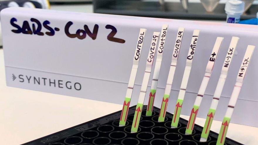 Perú supera las 2 millones de pruebas de COVID-19 y suben los contagios a 341.586