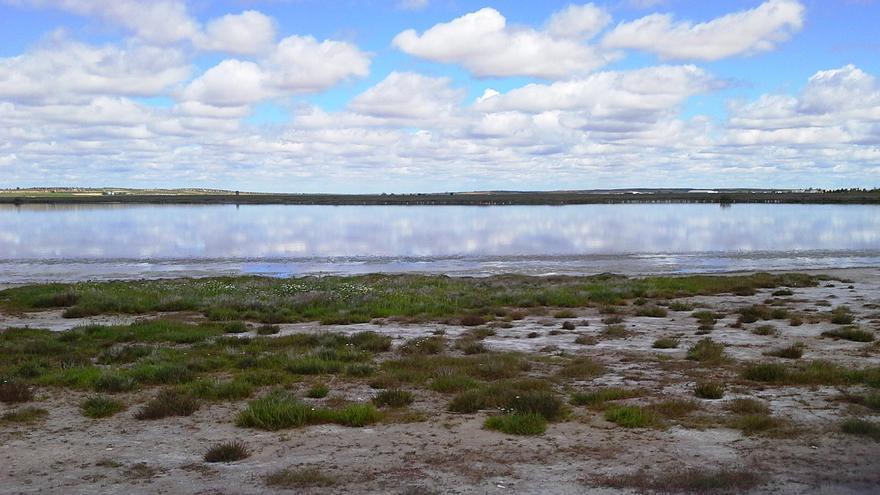 Laguna de El Longar en Lillo (Toledo) / Foto: Global Nature