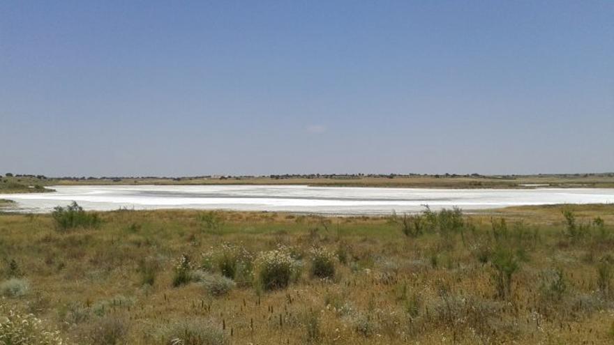 Laguna de Salicor, en Campo de Criptana