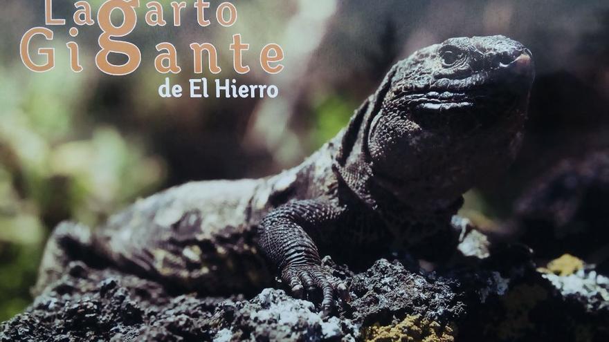 Cartel informativo del Lagarto Gigante de El Hierro.