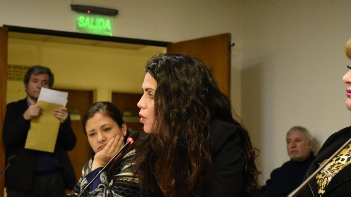 La directora ejecutiva del PAMI, Luana Volnovich