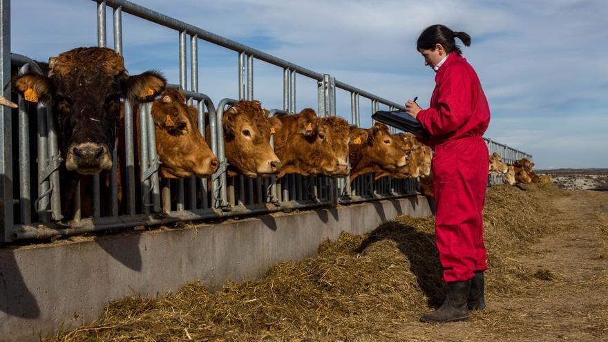En la búsqueda de la primera cátedra universitaria de España que ponga en valor el liderazgo de las mujeres rurales