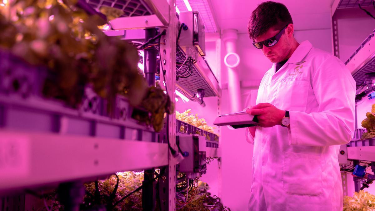 Un investigador del sector agroalimentario.