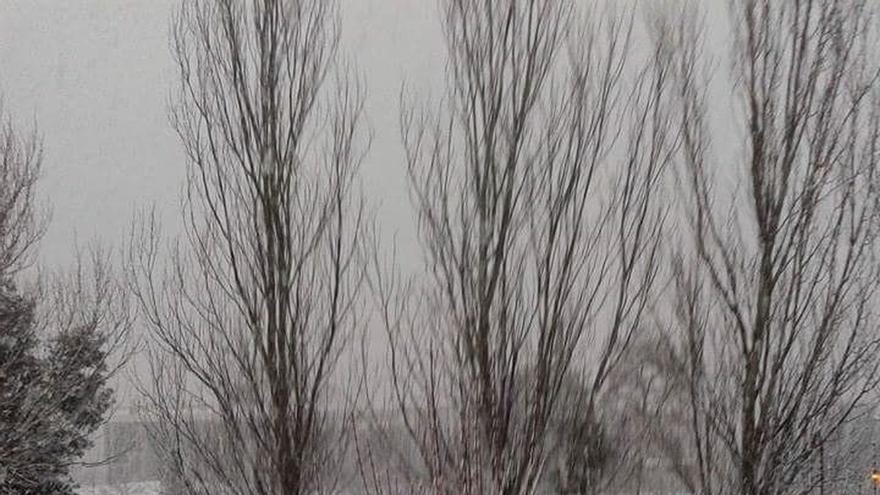 Un total de 600 familias de Bizkaia continúan sin suministro de luz por la nieve