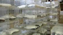 Varias urnas electorales apiladas en un almacén