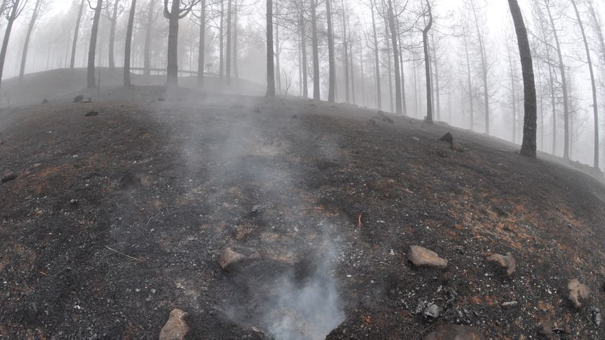Zonas quemadas de la cumbre de Gran Canaria donde aún se aprecia el humo