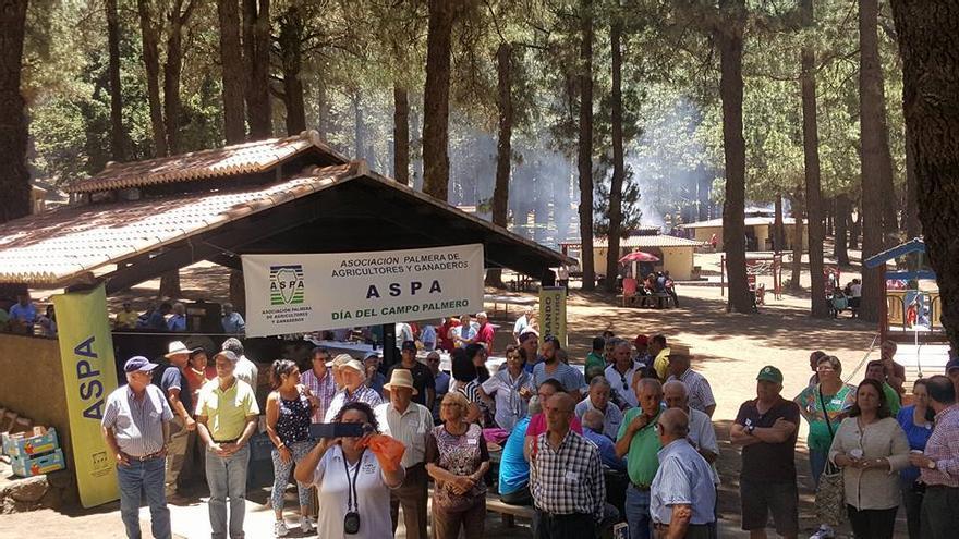 El Día del Campo Palmero se celebro el domingo, 10 de julio, como es tradicional, en el Refugio de El Pilar. Foto: Facebook de Nieve Lady Barreto.