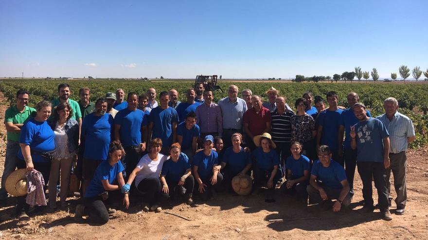 Visita a un viñedo del consejero de Agricultura, Francisco Martínez Arroyo / JCCM