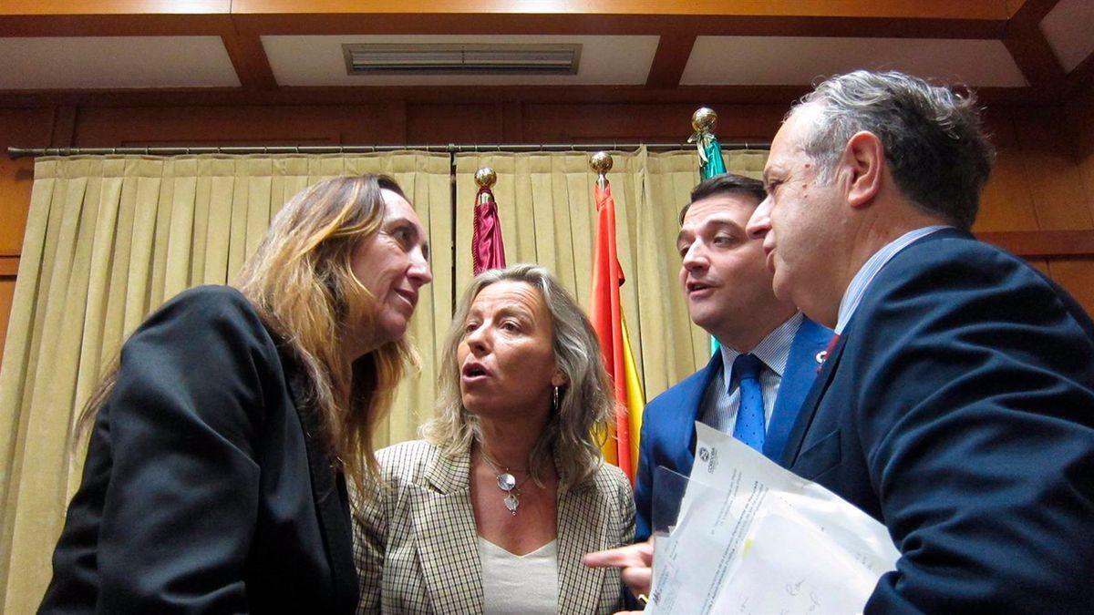 Badanelli (Vox), con Isabel Albás (Cs), Bellido (PP) y Fuentes (PP) en el Salón de Plenos.