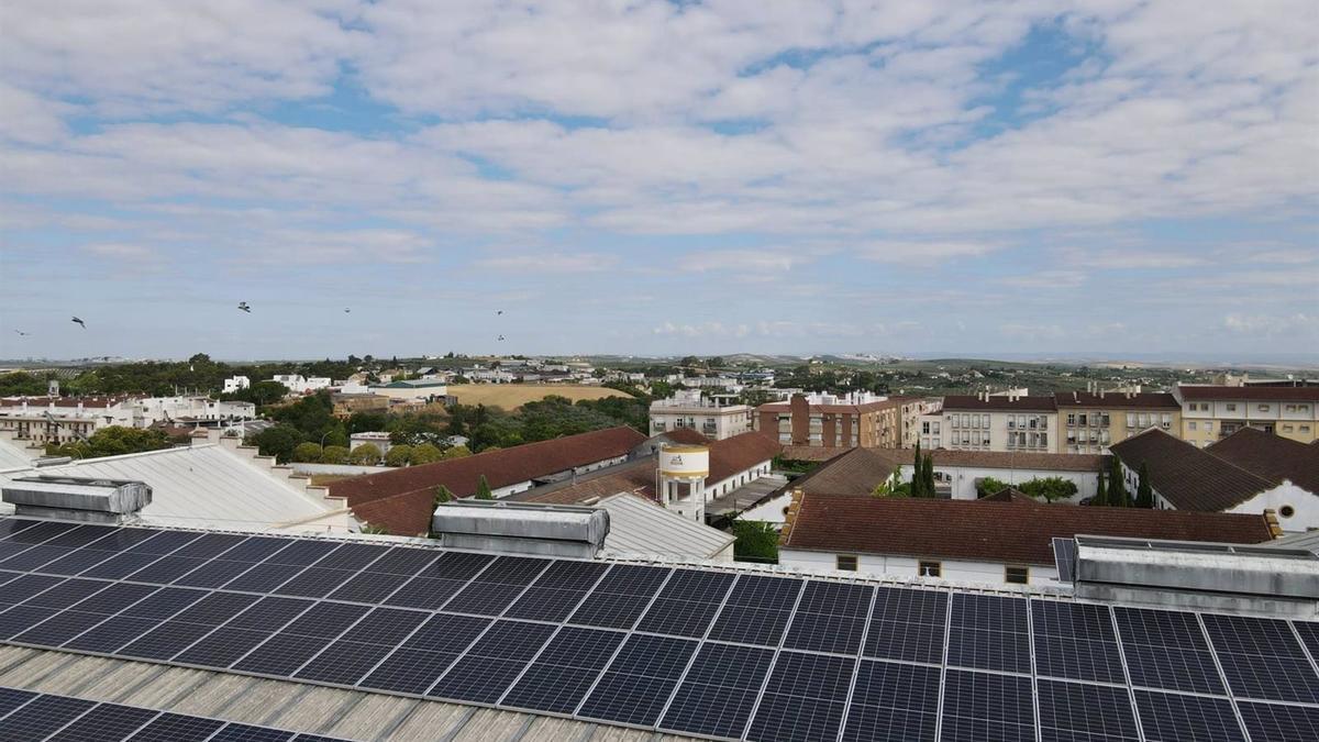 Módulos fotovoltaicos instalados por Endesa X en Bodegas Pérez Barquero.