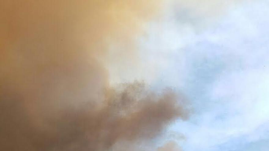 El incendio declarado en el área rural de Jedey en el municipio de El Paso que avanza hacia el este por zona de monte.