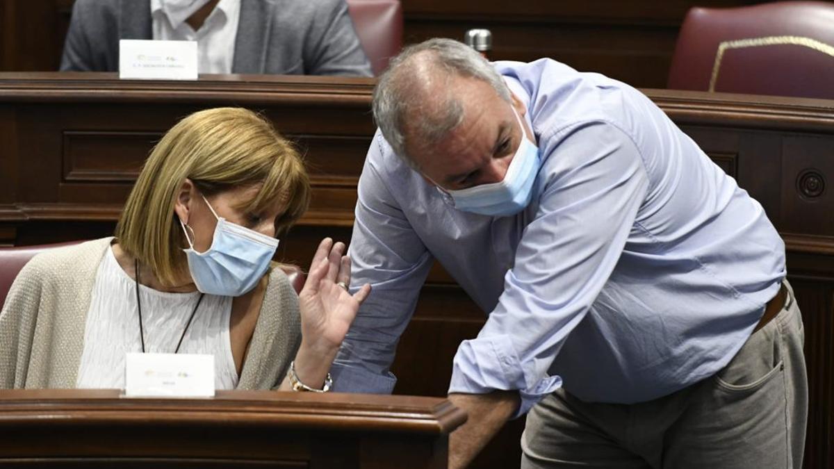 Esther González y Luis Campos, parlamentarios de Nueva Canarias