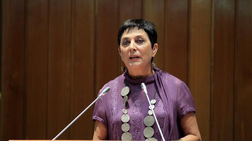 Gallizo propone aunar dispersión con acercamiento de presos de ETA a Euskadi