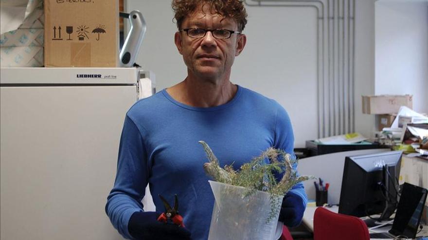 Descubren en la seda de un ácaro un nanomaterial con posibles usos biomédicos