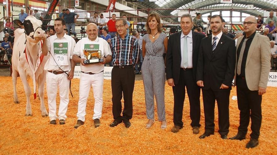 La vaca 'Llera McCutchen Brita', vencedora del XXII Concurso Regional de Ganado Vacuno Frisón
