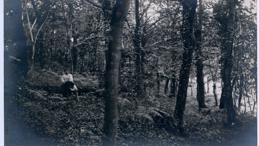 Niño, bosque. Cantabria. | Mario Corral
