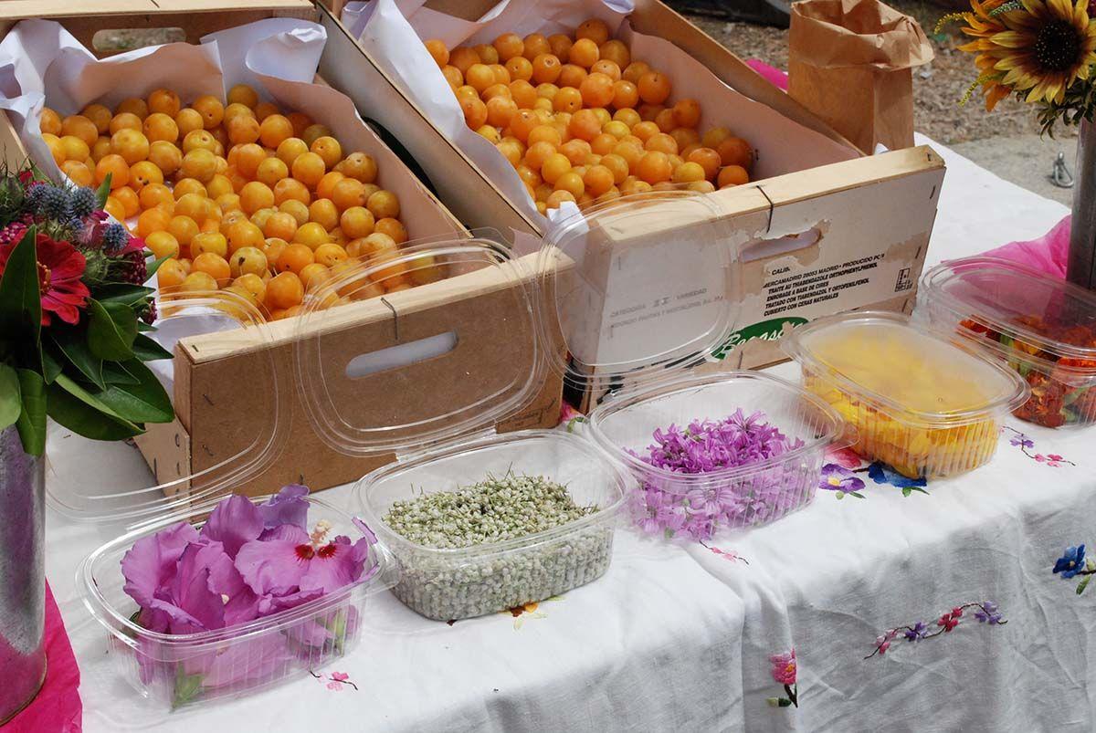 2- Flores para cocinar_Mercado Agroecológico_Malasaña a mordiscos