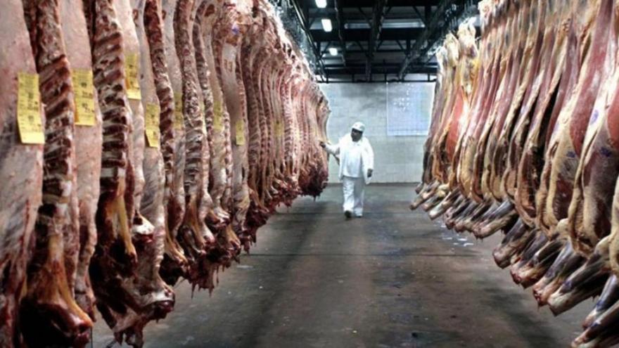 La exportación de carne se triplicó en los últimos 10 años.