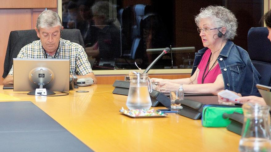 Juan Antonio Armentia y María Elena Arce, durante su comparecencia en el Parlamento.