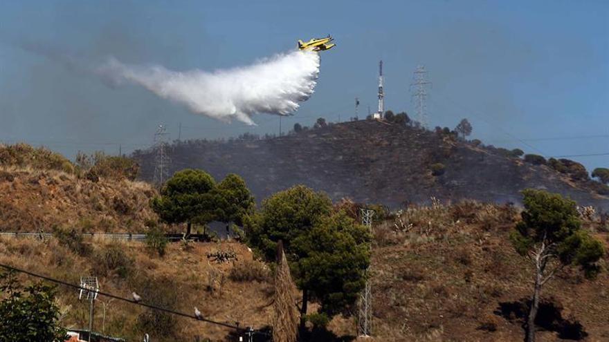 Dan por extinguido el incendio que quemó 18 hectáreas en Collserola (Barcelona)