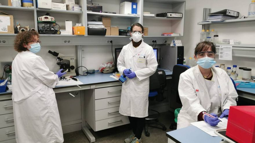 Algunas de las integrantes del Servicio de Inmunología de La Princesa. De izquierda a derecha, Reyes Tejedor, Ana Alcaraz y Ana Marcos. / Hospital de La Princesa