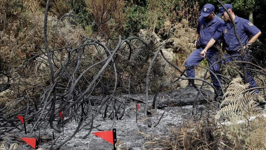 Extinguidos dos incendios surgidos la pasada noche que quemaron 62 hectáras en Riós