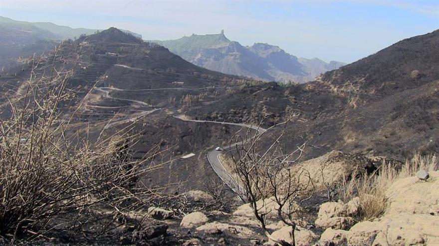 Vista de la cumbre de Gran Canaria tras el incendio forestal que arrasó 2.700 hectáreas