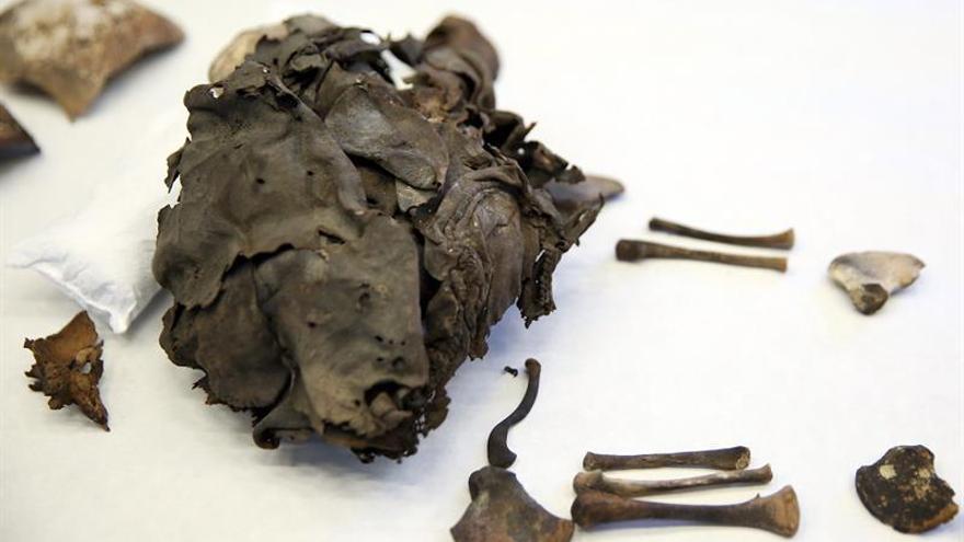 El Museo de Naturaleza y Arqueología de Tenerife presenta los restos momificados de dos recién nacidos guanches que se han encontrado en el municipio de Guía de Isora