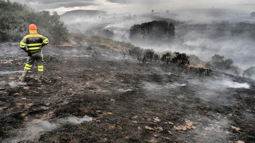 Incendio forestal. Un brigadista observando el terreno devastado en el incendio ocurrido el día 22 de agosto entre la zona de La Maragatería y El Bierzo. Villagatón (León). 22/08/2015 | FOTO: BRUNO MORENO